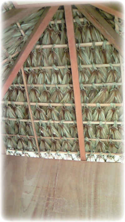 Anahaw roof