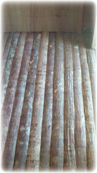 Raised floor of Anahaw lumber of Kubo